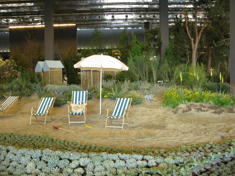 Tillandsie giardini in viaggio - Giardini idee da copiare ...