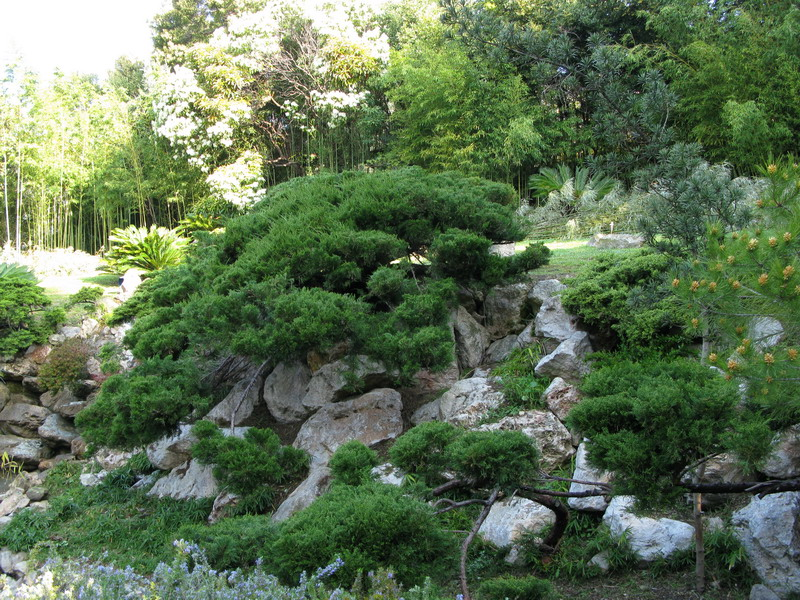 Come costruire un piccolo giardino giapponese giardini for Costruire laghetto in giardino