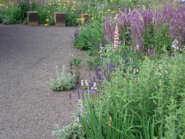 Giardini in Viaggio - Part 55
