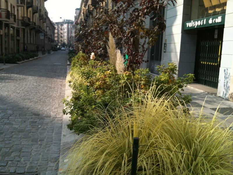 Aiuole urbane giardini in viaggio for Progetto aiuole per giardino