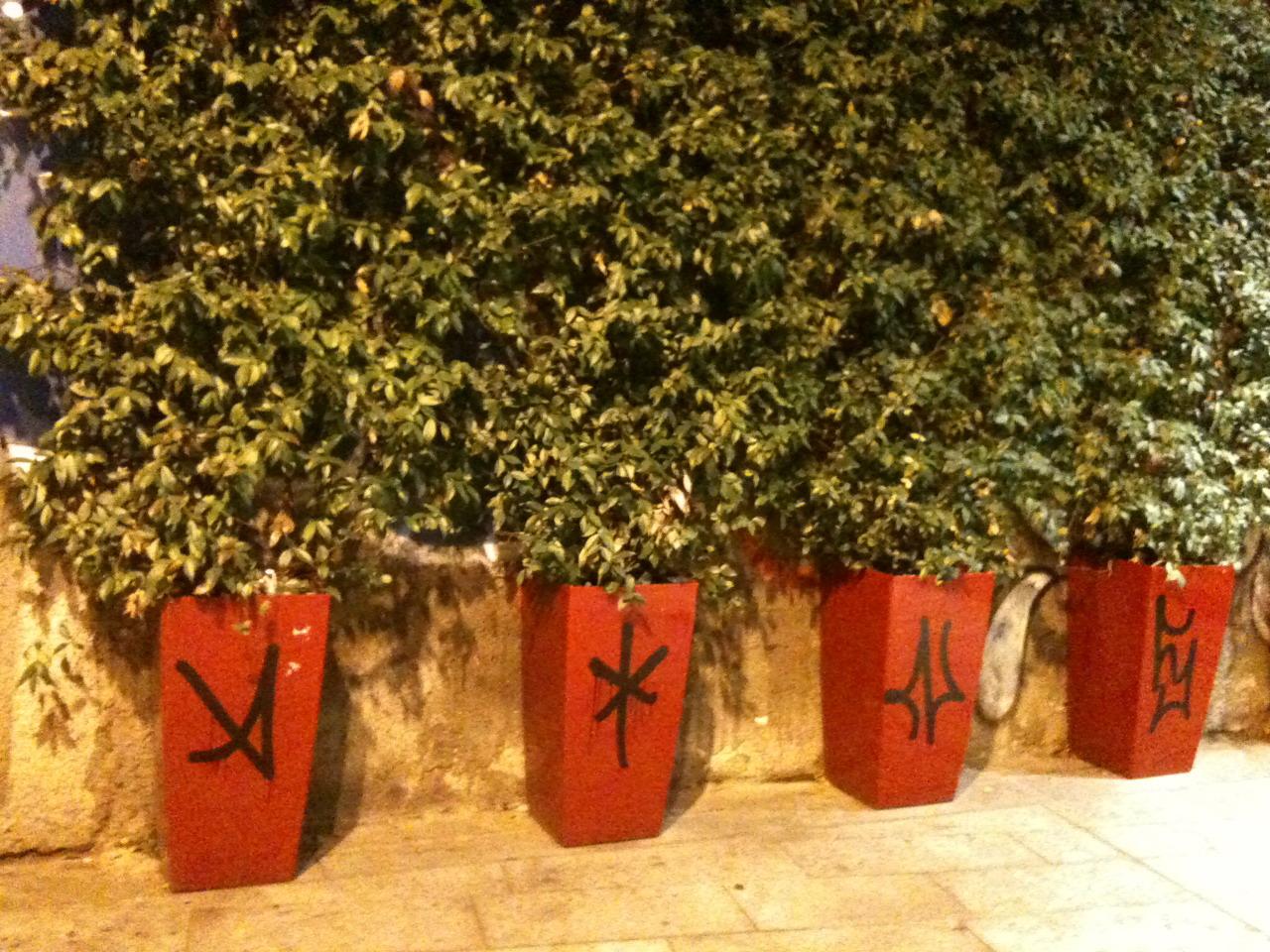 Alberi a milano giardini in viaggio for Falso gelsomino in vaso