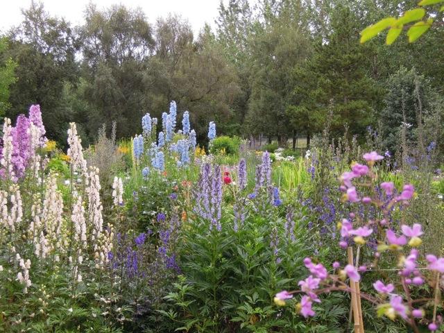 Giardini in viaggio part 44 for Aiuole perenni