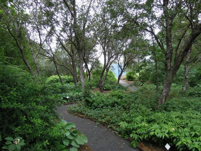 Federica raggio giardini in viaggio for Aiuole perenni