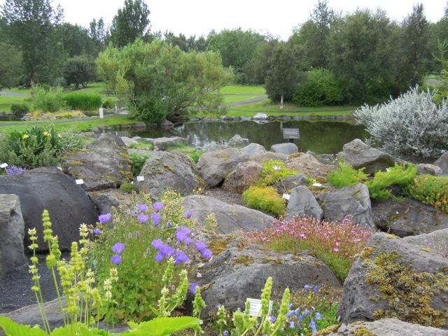 Giardini rocciosi giardino roccioso decorare la tua casa for Giardino roccioso