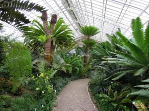 Giardino botanico monaco baviera giardini in viaggio for Serra piante grasse