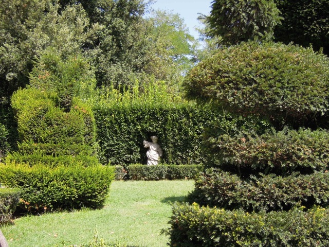 Roma il fascino decadente dei giardini di citt di for Siepe di lauro