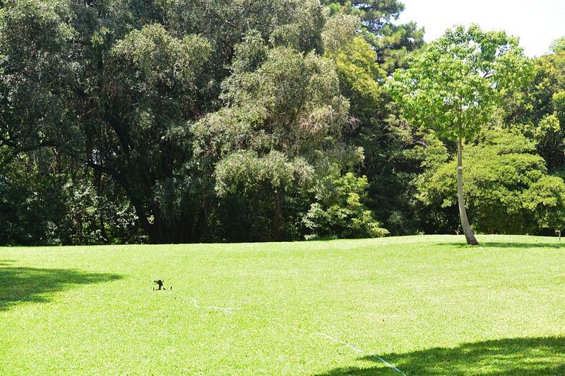 Un giardino privato in buenos aires il parco di villa - Giardino in inglese ...