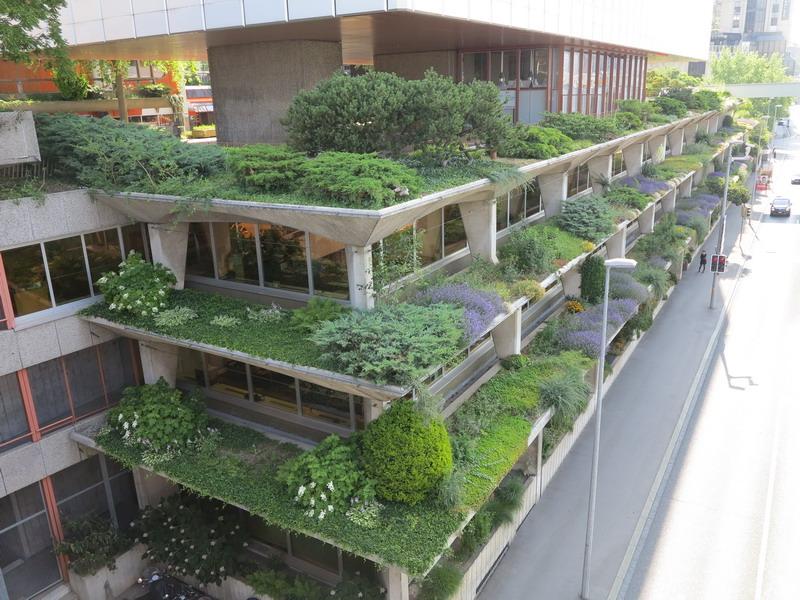 Amato Verde Pensile | Giardini in viaggio BG88