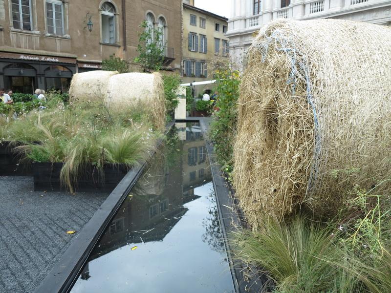 Vivaio valfredda giardini in viaggio for Zenucchi arredamenti