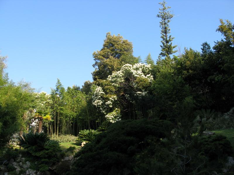 Come costruire un piccolo giardino giapponese