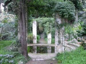 Giardini d'inverno in riviera, di Federica Raggio