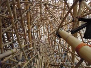 Big bambù al Macro Testaccio a Roma di Federica Raggio