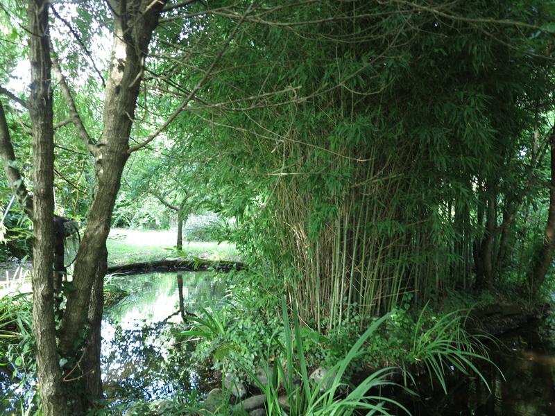 Il giardino di Pia Pera