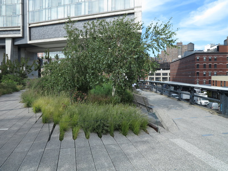 New York: High Line