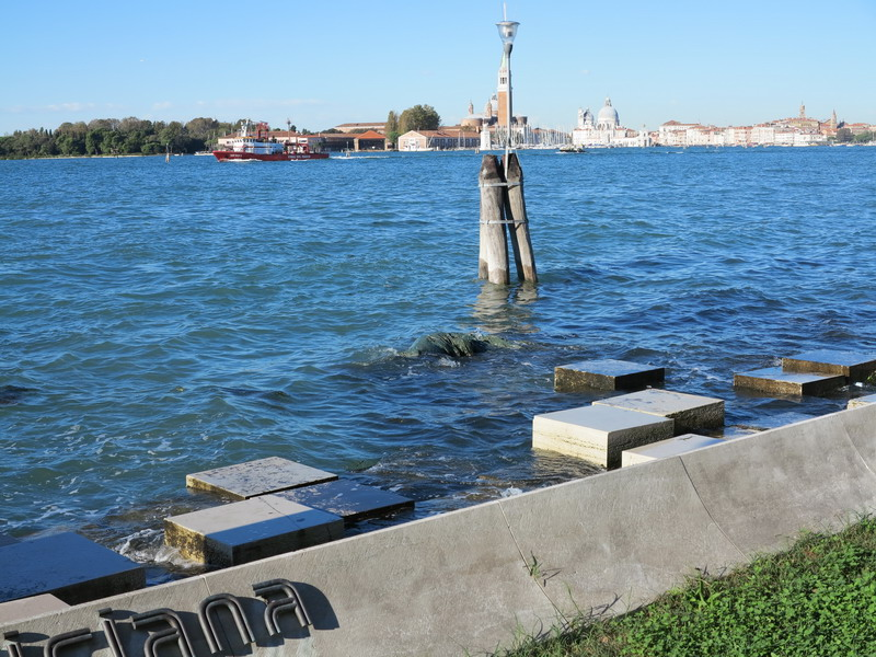 Da una visita alla Biennale di Venezia
