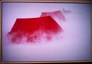 Scattate a una mostra dedicata agli scatti di Walter Bonatti