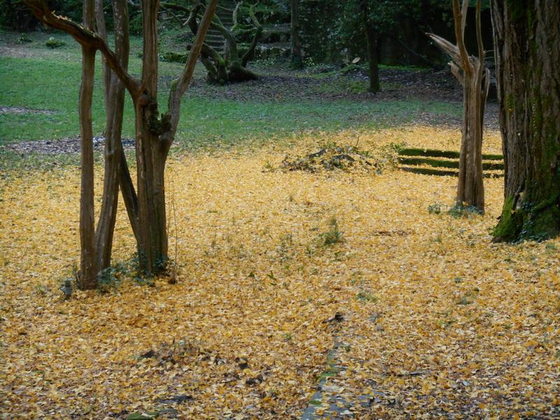 Villa Ada a Bagni di Lucca nella suggestione dell'autunno di Flavia De Petri