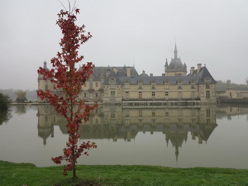 Courson: Le giornate delle piante in autunno a Chantilly. Alcune riflessioni