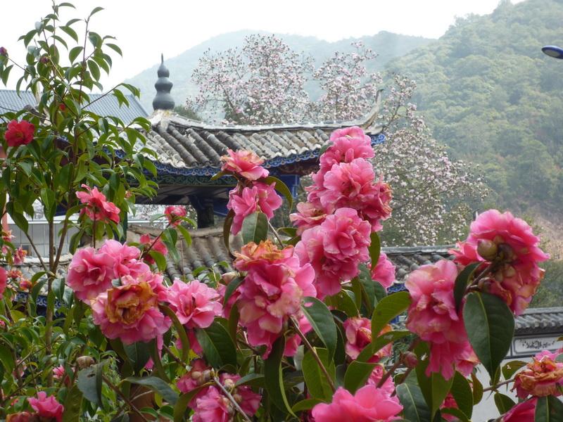 Diario di viaggio dallo Yunnan di Elvira Imbellone