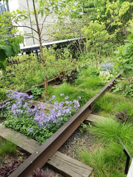 High Line in primavera. Testo e foto di Marisa Aresi