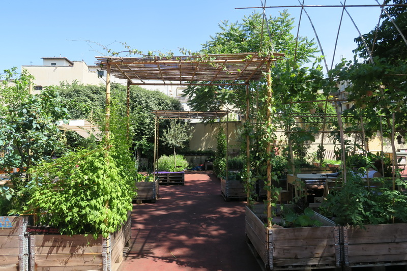 Orti dipinti: un community garden a Firenze