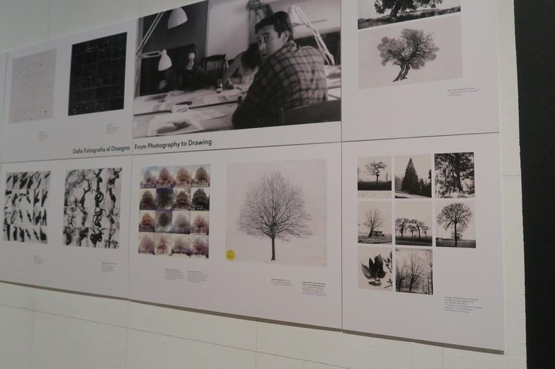 L'architetto che disegnava gli alberi: Cesare Leonardi