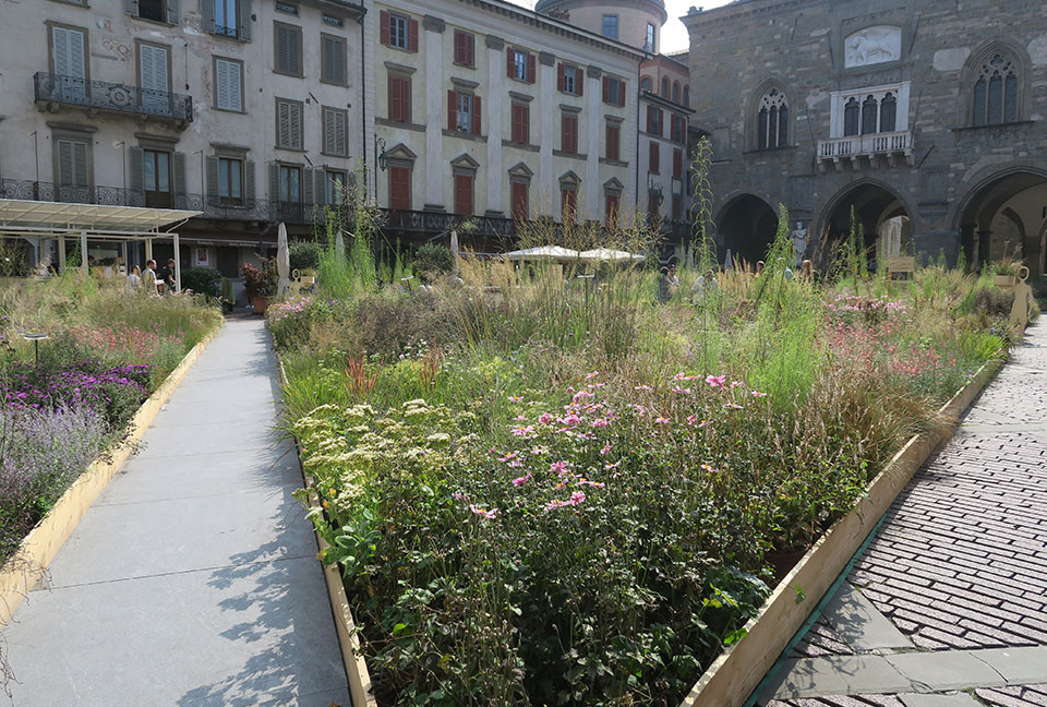 Maestri di paesaggio 2018: la piazza disegnata da Piet Oudolf a Bergamo alta
