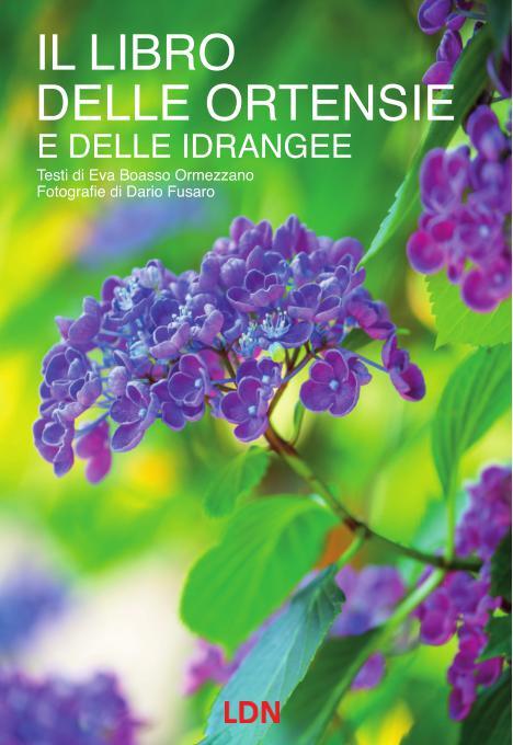 Letto per voi: Il libro delle ortensie e delle idrangee di Eva Boasso Ormezzano