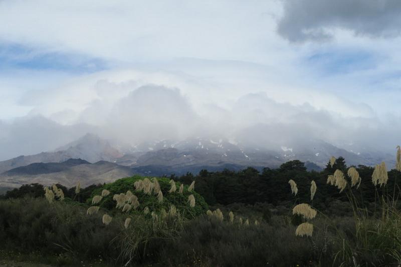 Nuova Zelanda 2. Paesaggi on the road