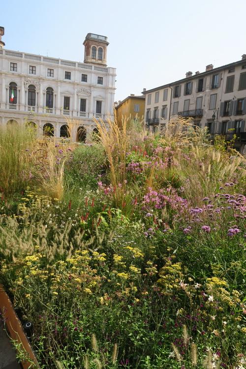 La piazza di Bergamo di Nigel Dunnett