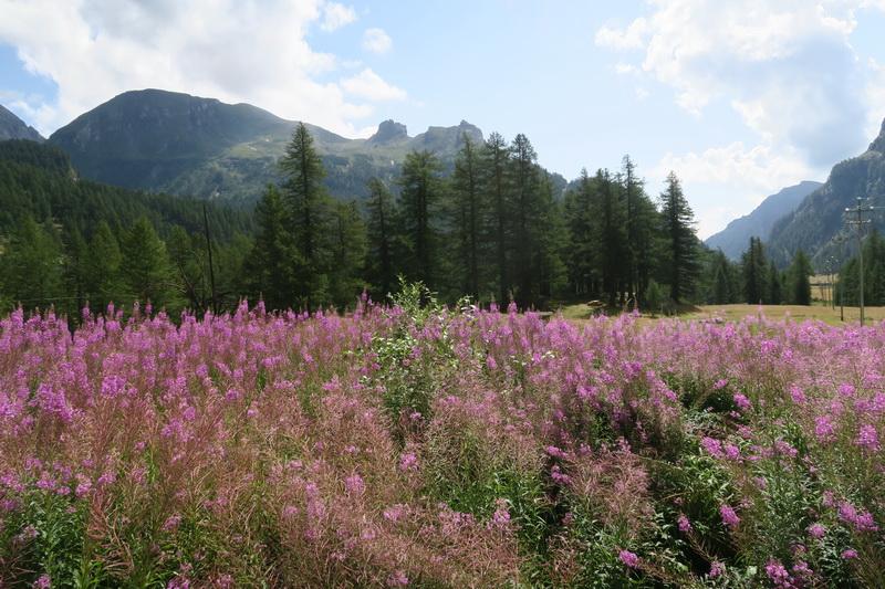 Due giorni all'Alpe Veglia